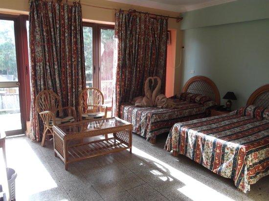Hotel Los Helechos : Habitacion a donde estabamos / Abril 2012