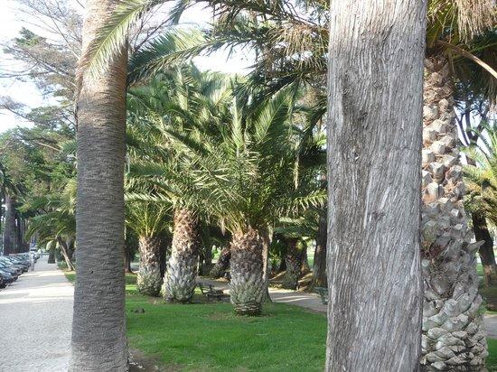 Hotel Alvorada: parc devant le casino