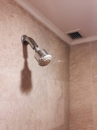 Sheraton Senggigi Beach Resort: Shower head on my deluxe room.