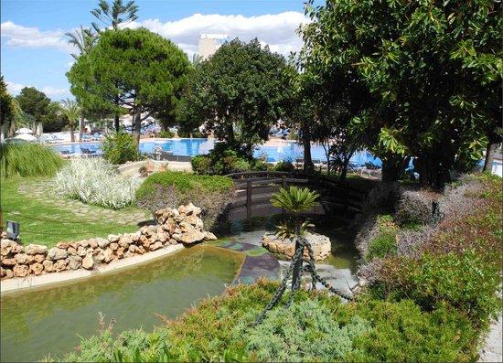 GPRO Valparaiso Palace & SPA: Jardin et piscine