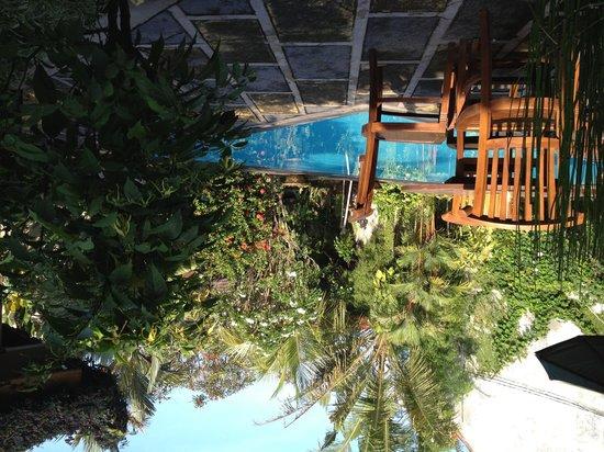 Rumah Mertua: RM tropical garden