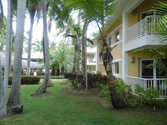 Grand Palladium Punta Cana Resort & Spa : vista de las villas al jardin
