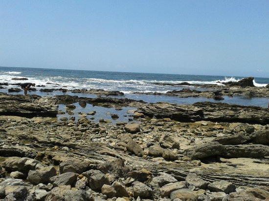 Little Corona Beach: tidepools