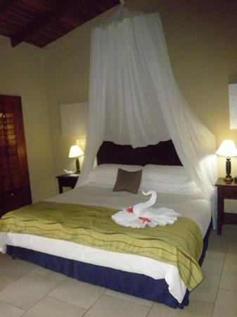 Falls Resort at Manuel Antonio: chambre