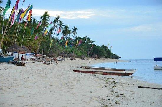 Coco Grove Beach Resort : beach