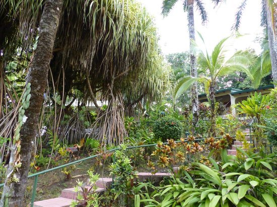 Falls Resort at Manuel Antonio: jardin