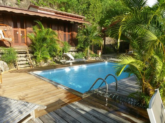 Ali-Nais : Une très jolie piscine entourée de plantes