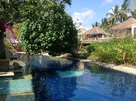Pool Villa Club Senggigi Beach Lombok : Ground floor view of lagoon pool
