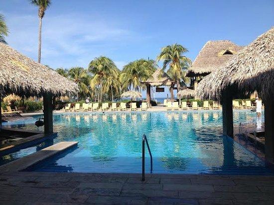 Flamingo Beach Resort & Spa: Pool View
