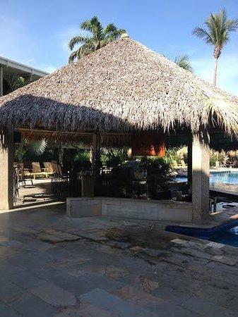Flamingo Beach Resort And Spa : The Pool Bar
