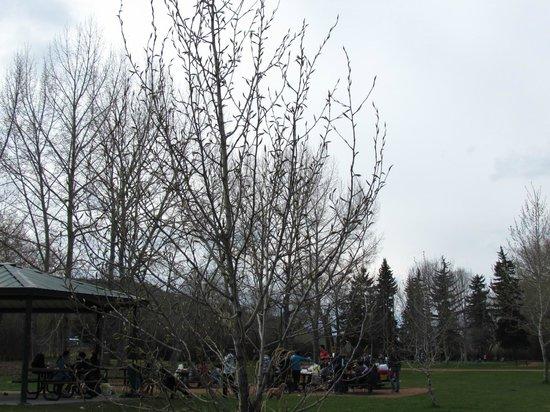 Edworthy Park & Douglas Fir Trail: ส่วนหนึ่งของพื้นที่ปิกนิค