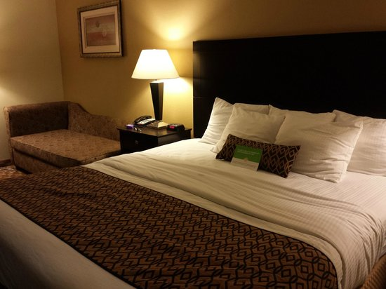 La Quinta Inn & Suites Lexington South / Hamburg: King size bed  with Chaise Lounge
