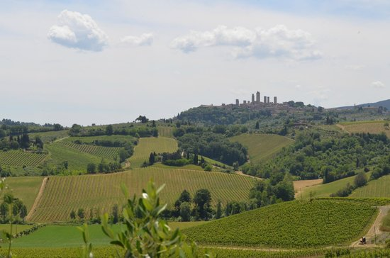 Walkabout Florence Tours: View of San Gimignano from Farm