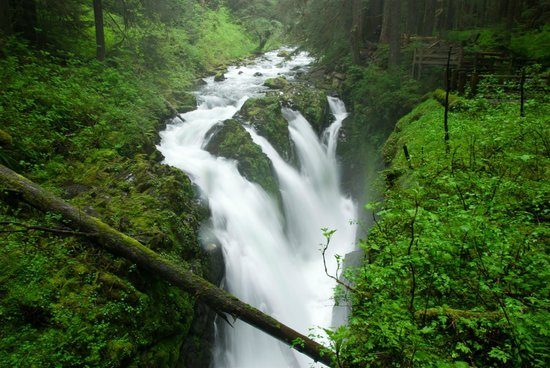 Sol Duc Hot Springs Resort: Sol Duc falls