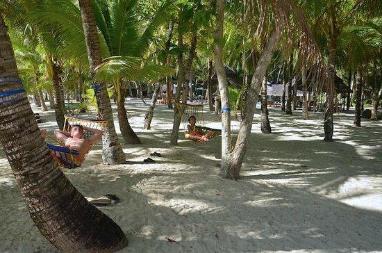 Coco Grove Beach Resort : Relaxing surrounding