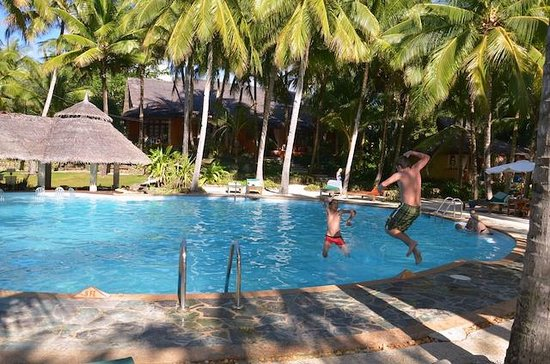 Coco Grove Beach Resort : Pool