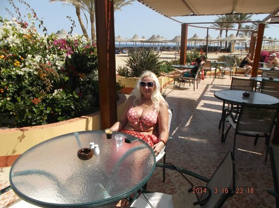 El Malikia Resort Abu Dabbab: in the beach bar