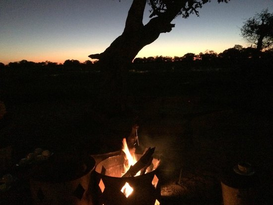 andBeyond Xaranna Okavango Delta Camp: In the mornings it can be quite chilly, a light breakfast is served by the fire then off on safa