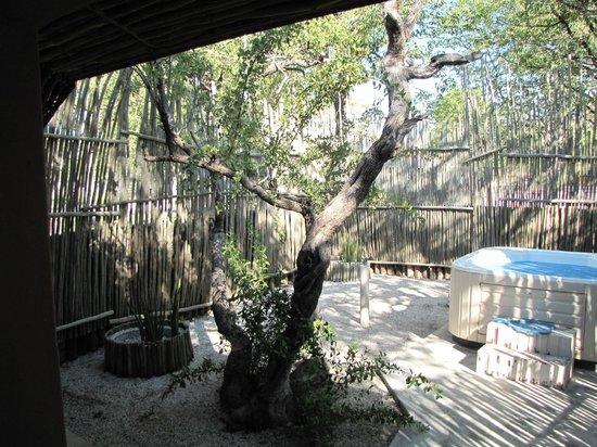 Halali Resort: Le petit jardin