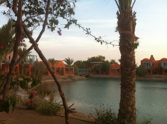 Sheraton Miramar Resort El Gouna: Вид с террасы