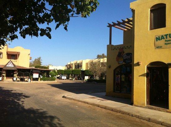 Sheraton Miramar Resort El Gouna : Dawn Tawn