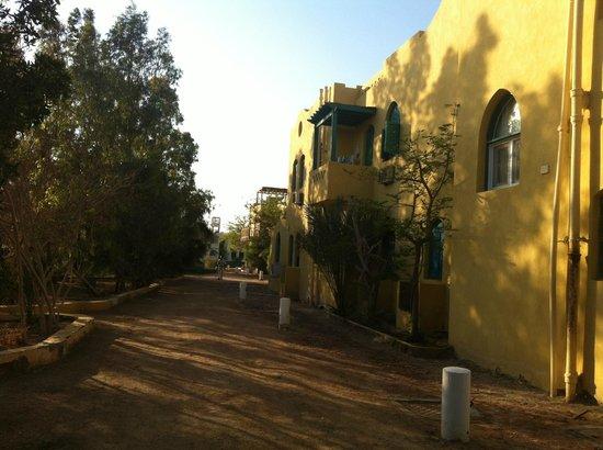 Sheraton Miramar Resort El Gouna: Dawn Tawn