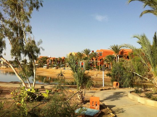 Sheraton Miramar Resort El Gouna: пляж- лагуна-2