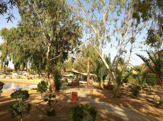 Sheraton Miramar Resort El Gouna: пляж - лагуна -1