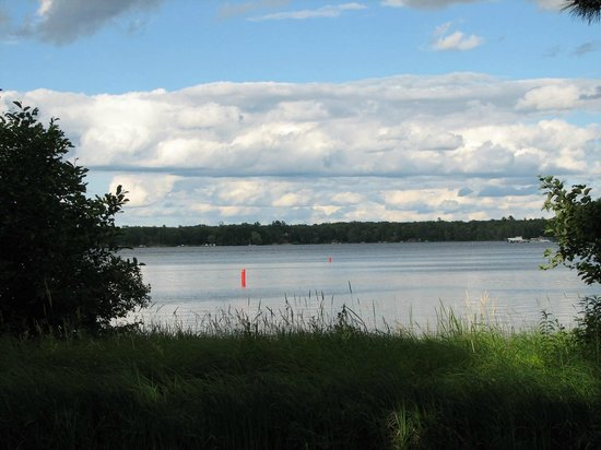 Bay Lake: Summer sunshine