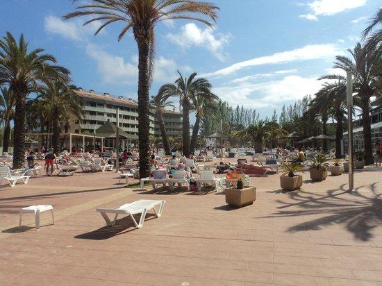 Aparthotel Costa Encantada : Pool area