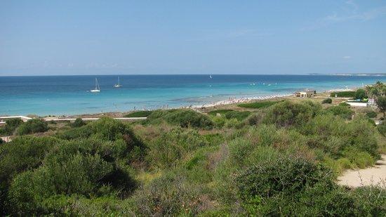 Apartamentos Son Bou Gardens: La spiaggia