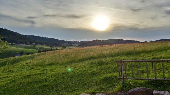Fehrenbacherhof : Blick aus dem Zimmer