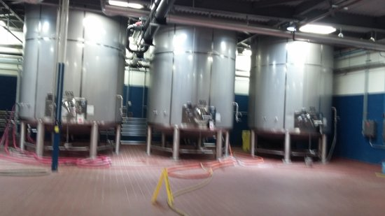Southern Beer Tours: behind the scenes at sweetwater brewery!