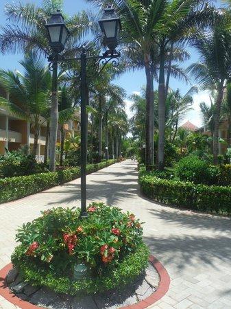 Luxury Bahia Principe Ambar: the grounds were immaculate