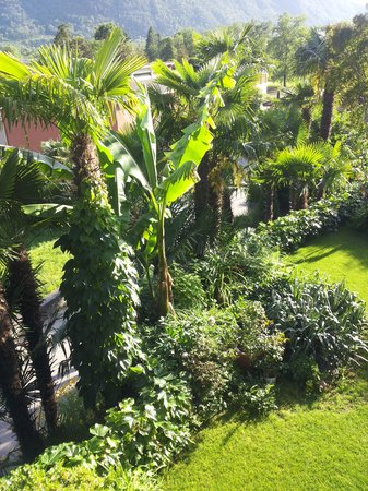Charme Hotel Barbate: Garten