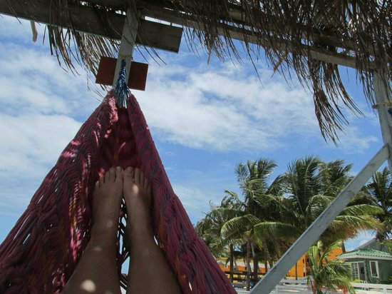 Yuma's House Belize: on the hammocks on the dock
