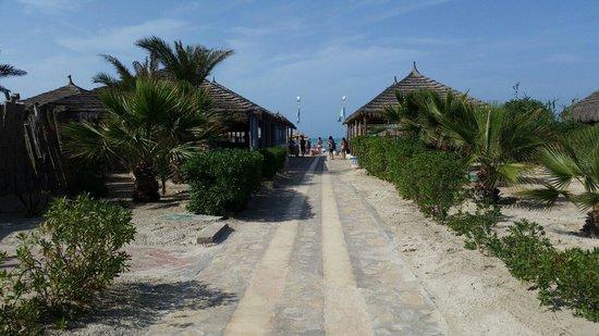 Yadis Djerba Golf Thalasso & Spa: La stradina che porta in spiaggia