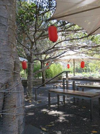 Bodhi Restuarant Bar
