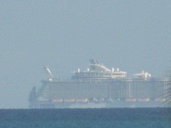 Hotel Playa Coco: UN VISITEUR