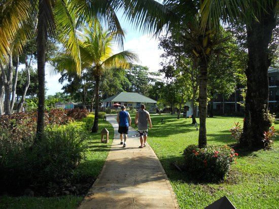 Beaches Negril Resort & Spa : Morning stroll