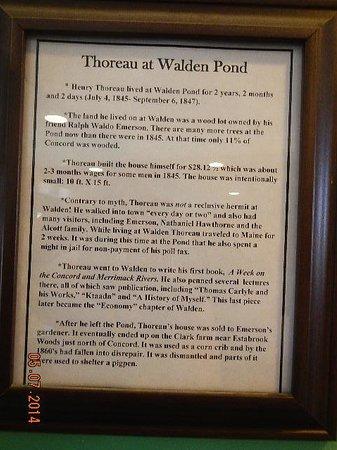 Walden Pond State Reservation: poster on site