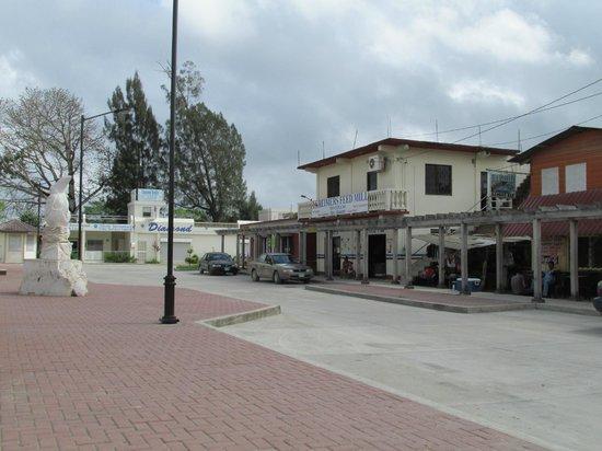 Western Guest House: San Ignacio