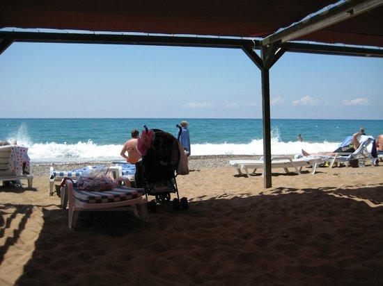 Otium Hotel Seven Seas: Beach