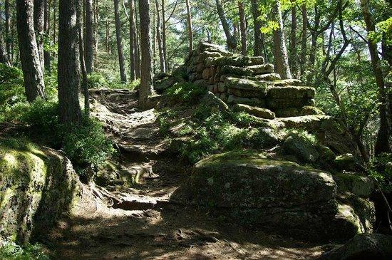 Mont Sainte Odile Convent: Le mur païen du Mont Sainte Odile, Ottrott 67