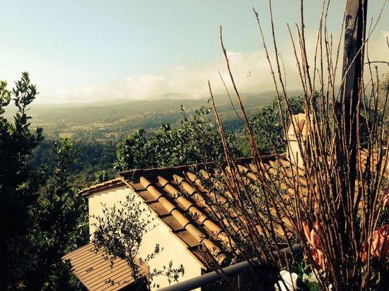 La Solaia: Panorama