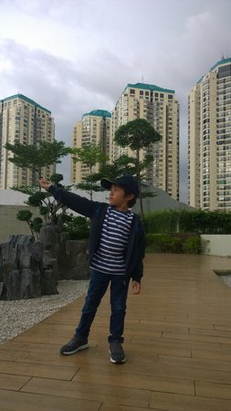 Pullman Jakarta Central Park: Garden on top, with the view of apartemen building