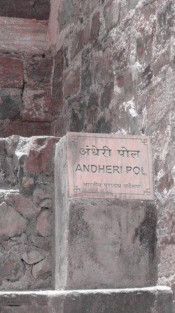 Ranthambore Fort: Ranthambor Fort