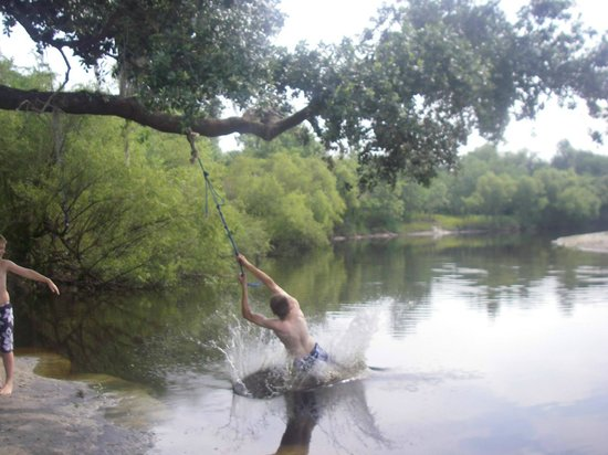 Peace River Campground : Rope Swing on the River