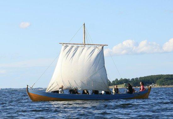 Musée des navires vikings de Roskilde : Sejltur med vikingeskib