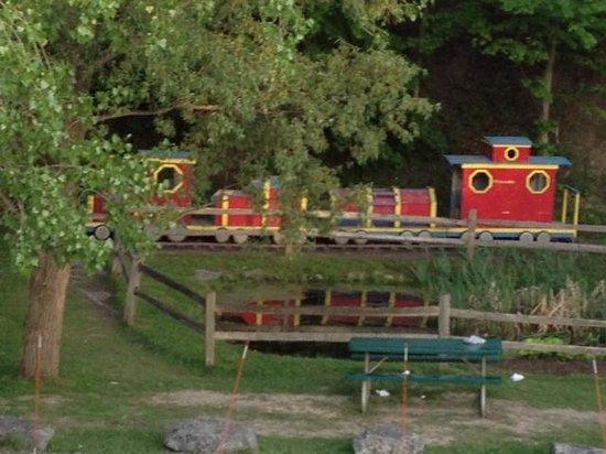 Cayuga Lake Creamery - train in back